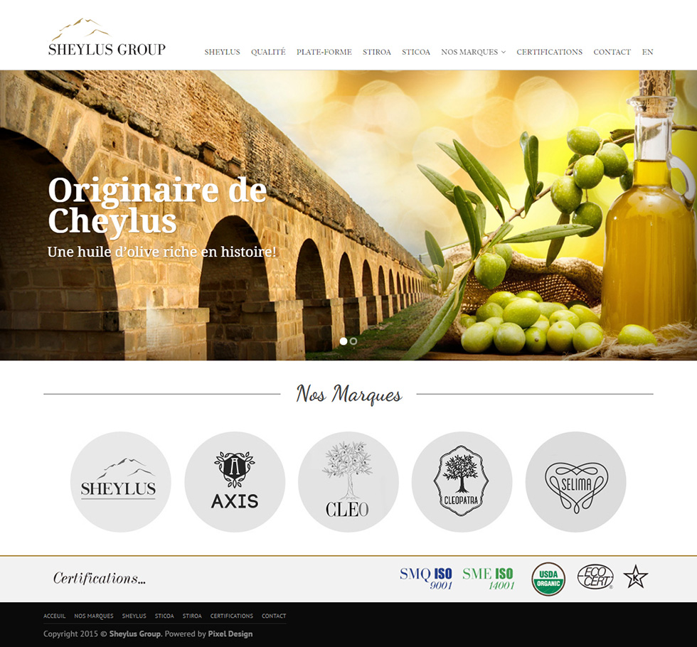 Webdesign Corporate, Sheylus Group